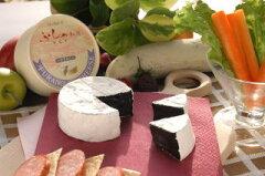 無添加手づくりチーズ北海道富良野産 チーズ セピア(イカスミ入り) 100g10P02Aug14