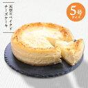 バレンタイン ケーキ 天空のベイクドチーズケーキ 5号 送料...