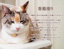 """指もとで香箱座り♪""""CatLoaf""""バースストーン猫リング【K10orK18/WG・PG・YG】【送料無料】【プレゼント】【ギフト】"""