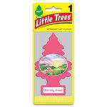 リトルツリー(LittleTree)モーニング・フレッシュ10228