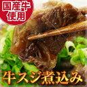 【送料無料】専門店の味をご自宅で!牛すじ煮込みギフトセット(約150g×10パッ…