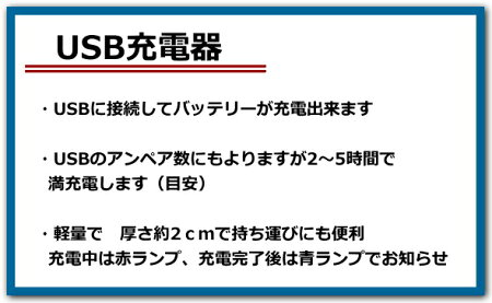 【SONY】ソニー安心の大容量NP-FV100互換バッテリー2個+USB充電器セット