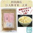 巨大胚芽米 900g メール便 杉田商店 GABA ギャバ アミノ酸 玄米 減農薬  送料無料