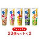 【2箱】【ゴールドパック】 常温 国産ジュース5種セット ア...