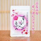 すっぽんの恵みプレミアム1袋62粒入り(約1か月分)すっぽんサプリ すっぽんコラーゲン コラーゲン