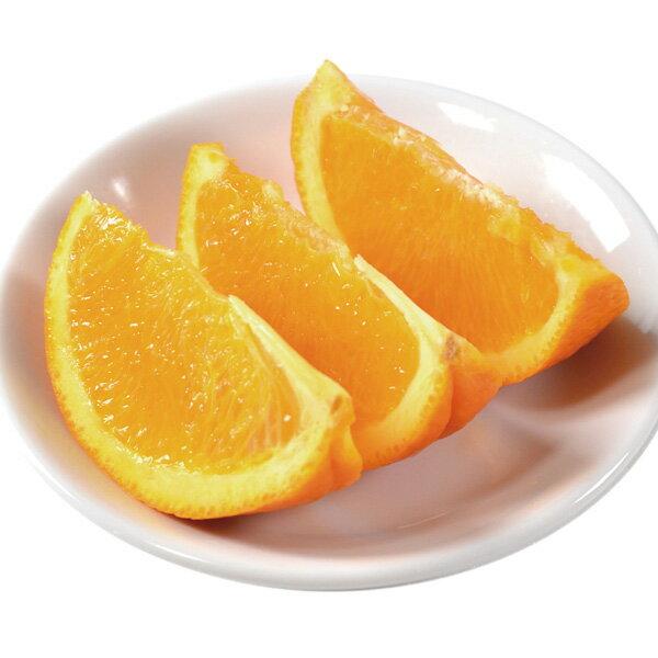 アスク)トロピカルマリア カット オレンジ500g(オレンジ トッピング フルーツ おれんじ イベント 海の家 屋台 シロップ 割もの トッピング かき氷)画像