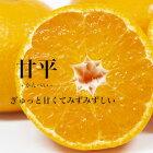 【送料無料】愛媛県産「甘平」約5キロ柑橘訳あり【愛媛みかん/みかん】