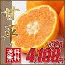 Pic_kanpei5kg