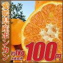 愛媛県「ポンカン」1kg(ご家庭用・小粒サイズ・不揃い)※こちらの商品は送料別商品となります※多少の ...