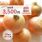 玉ねぎ(国産)10キロ