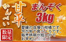 【送料無料】愛媛県産「甘平(かんぺい)」約3キロ柑橘訳あり【愛媛みかん/みかん】※沖縄・北海道・離島の方は別途500円が必要です