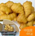 【食用】中国産 黄金生姜 4kg(近江生姜 黄色)...