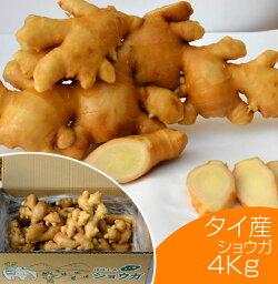 【食用】タイ産ほほえみショウガ4kg(近江生姜白)