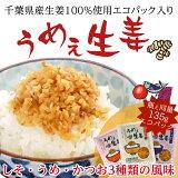 うめぇ生姜エコパック3袋セット(かつお、うめ、しそ味)DM便送料無料【当店一番人気】