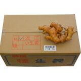 タイ産種生姜近江生姜(白)10kg【種子/種生姜/生姜/栽培