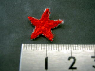 刺しゅうアップリケ 星型