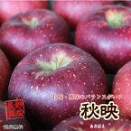 ≪今が旬≫信州産 秋映 約3kg(7-11玉)この時期食べるりんごならこれで決まりです
