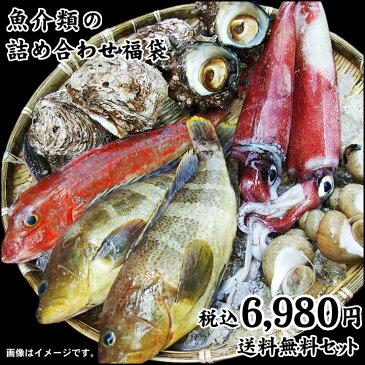 魚介類の詰め合わせ【6980円セット】福袋(魚介類4〜8品程度入) 【送料無料】