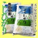 五ツ星お米マイスターの米問屋社長が選んだお米をしっかりみがきをかけて食卓までお届けします。【24年度新米】鳥取産『コシヒカリ』10キロ(5kg×2袋入)・送料無料・常温「お米マイスター厳選」