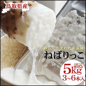 ねばりが強く肉質が緻密な特大サイズの長いも!【ねばりっこ】(3-6本入)約5kg送料無料鳥取県...