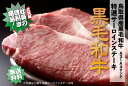 ブランド牛の始祖「鳥取和牛」10日間以上の冷蔵熟成でうまみを増した「熟成ビーフ」鳥取県産黒毛和牛 特選サーロインステーキ(A3〜A4ランク、1枚200g[生])【送料無料】