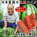 日本屈指のすいかの名産地!鳥取から食べ応え満点の甘ぁ~いスイカをお届け!!河本農園の大玉ス...