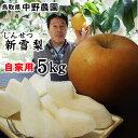 【クーポンで1280円引き!】【果肉が柔らかい完熟混じり】中...