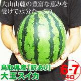 送料無料![訳あり]大玉スイカ(1玉6-7kg程度)[鳥取県産西瓜][常温]水分たっぷり♪