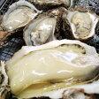 送料無料【スピード出荷】天然岩牡蠣[生] 1kg詰め込み(5-9個程度入り)【お刺身・焼き牡蠣♪】