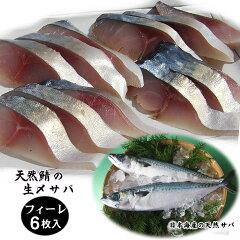 日本海産 天然 サバ フィーレ (6枚、480g) / Japanese Wild Fish Mackerel Filet (6 pieces, 480g)