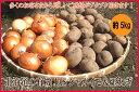 有機栽培玉ねぎ