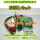 皆様の応援で販売開始しました。露地栽培野菜は極力さけてハウス栽培の野菜を詰め合わせてお送りいたします。ご了承ください。茨城朝採り野菜お試しセット