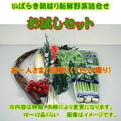 皆様の応援で販売開始しました。露地栽培野菜は極力さけてハウス栽培の野菜を詰め合わせてお送...