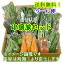 野菜セット「小家族」セットイメージです。