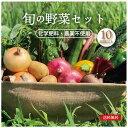 旬の野菜 詰め合わせ 11品目前後 Lセット オーガニック おまかせ 野菜セット 農家直送 送料無料 自然農法 自然栽培 とれたて 新鮮  産直 食材 人気のセット 化学肥料・農薬不使用