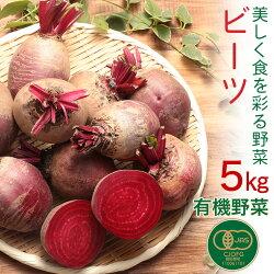 有機野菜オーガニックビーツ5kg化学肥料・農薬不使用農家直送送料無料とれたて新鮮有機野菜旬の野菜有機JAS認証JASマーク完全有機野菜産直福島県白河市