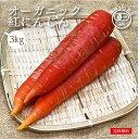 有機野菜 オーガニック 紅にんじん 京くれない 3kg 化学肥料・農薬不使用 無農薬 農家直送 送料無料 とれたて 新鮮 有機野菜 旬の野菜 有機JAS認証 JASマーク 有機野菜 産直 有機にんじん 京にんじん にんじん