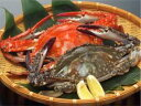 伊勢湾・三河湾の天然・渡り蟹を活〆にして氷締めでお届けします。【送料無料】【訳あり・爪折...