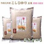 無農薬こしひかり玄米、早刈り玄米、特別栽培米、新米、防災食の画像