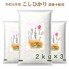 無農薬無洗米こしひかり特別栽培米新米愛知県産離乳食防災食の画像