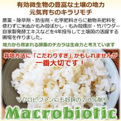 マクロビオティックマクロビもち麦の画像