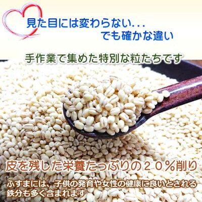 無農薬栽培のもち麦キラリモチ
