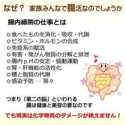 腸腸活腸内環境腸内細菌腸内環境腸内フローラ改善