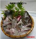 長崎県対馬産「幻の魚クエ」クエ鍋セット(700g)【送料無料】