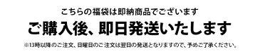 プーマ・プーマゴルフ PUMA・PUMA GOLF 日本正規品 日本規格 メンズ 即納 福袋 ゴルフウェア福袋 メンズ福袋 2019年新春福袋 総額13400円以上封入 トップス1点&グッズ2点入り 数量限定 お早めに! 送料無料 ゴルフウェア