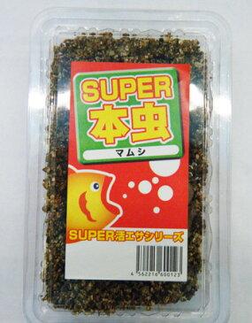 活エサ 養殖SUPER本虫(マムシ)1,000円パック ※ノークレーム限定