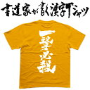【一撃必殺(縦書)】書道家が書く漢字Tシャツ T-timeオリジナル ...