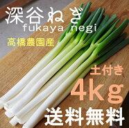 深谷ねぎ4kg♪産地直送!新鮮野菜