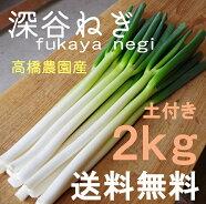深谷ねぎ2kg♪産地直送!新鮮野菜