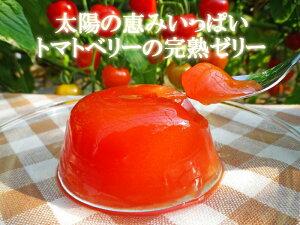 【トマトベリーの完熟ゼリー】あの高橋農園産トマトベリーがぷるるんジューシーなスイーツにな...